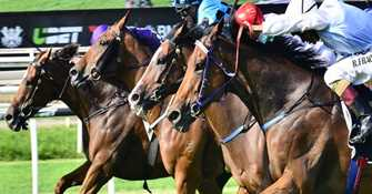 Queensland Racing Links Dr David Hodge Race Day Vet Services
