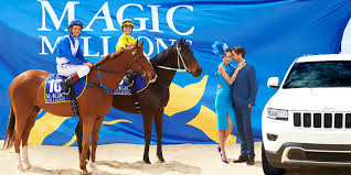 Special Rates On Yearlings X-Ray 2018 Gold Coast Magic Millions – Performance Equine Vets Brisbane